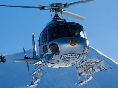 CPG Eurocopter AS350