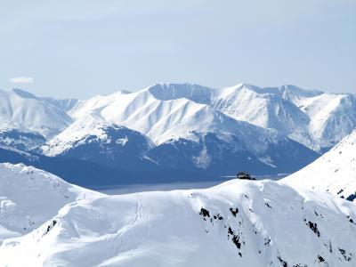CPG Chugach Powder Guides - cat skiing powder in Girdwood, Alaska